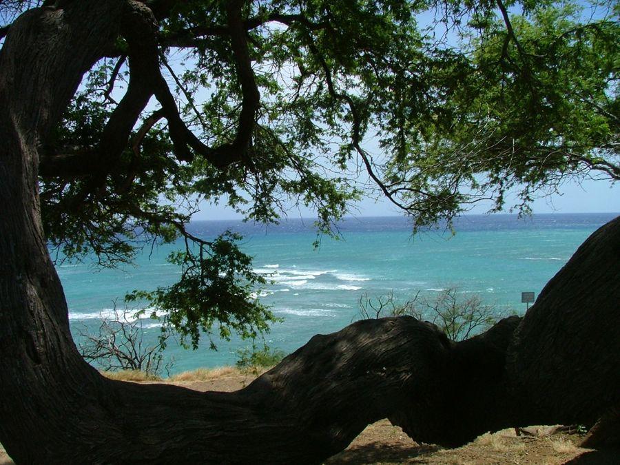 Oahu view's 4