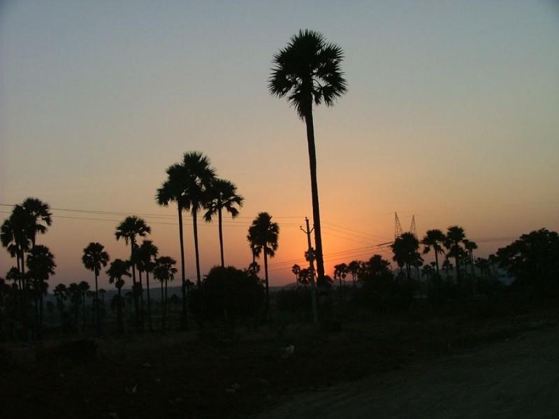130 Sunset.