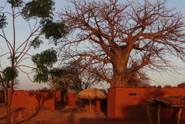Mnase Village - Day 2